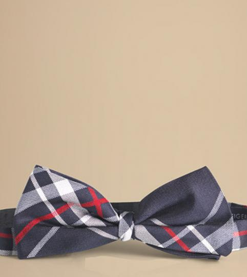 Tommy Hilfigger American Tie,